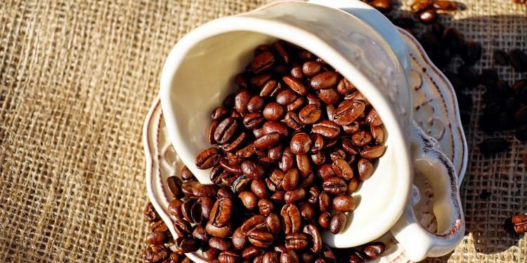 koffín
